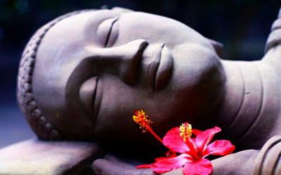 4 principes bouddhistes pour vivre un amour véritable